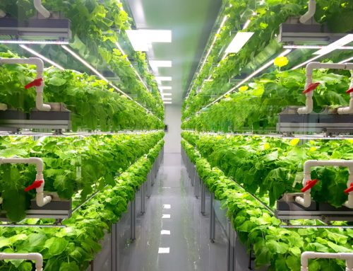 Greengro Technologies Announces International Expansion Strategy